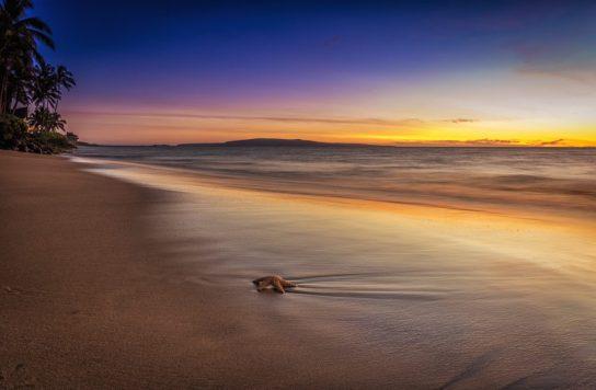 Maui - Sunset