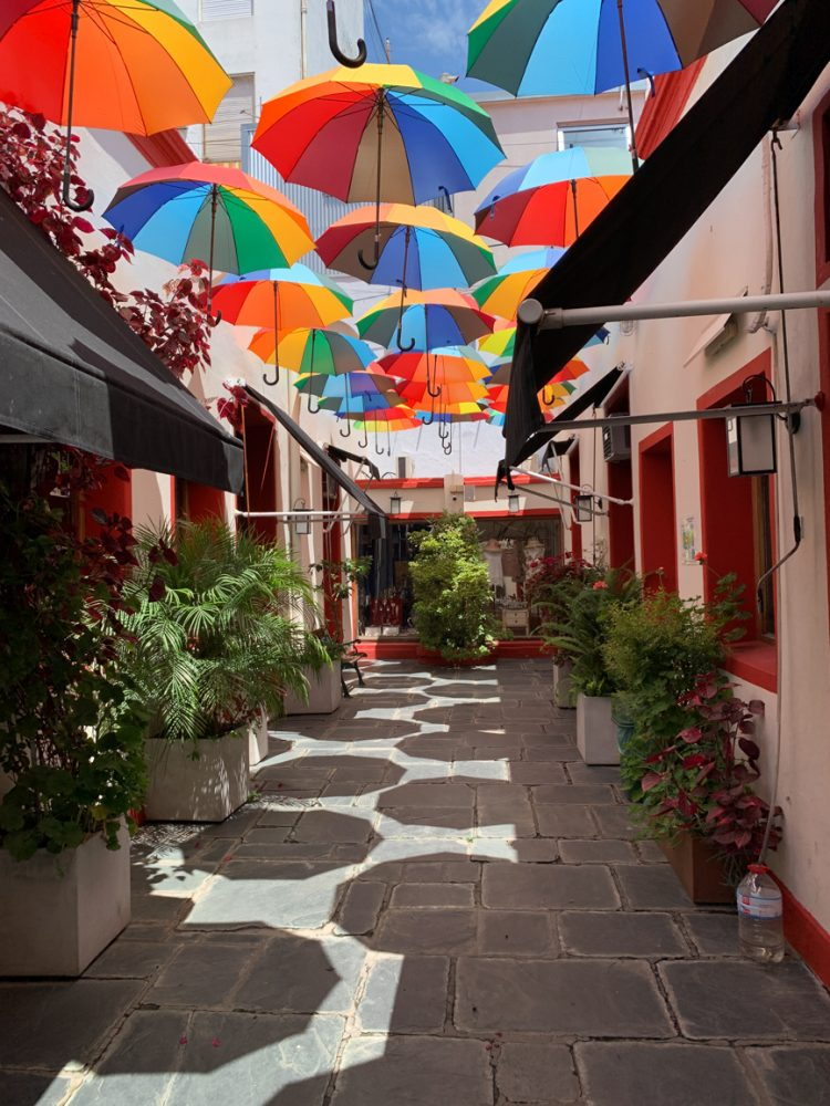 Umbrellas in Buenos Aires, our last stop on our cruise to south america and Antarctica
