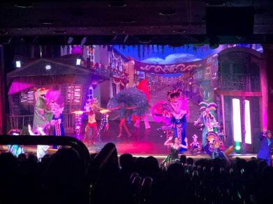Visit a Show on A Cruise Sea Day