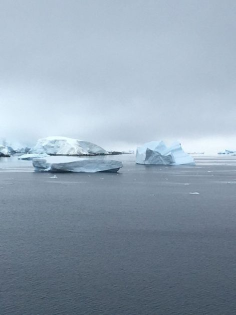 Antarctic Icebergs on board the Coral Princess