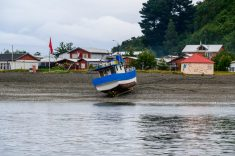 Puerto Montt harbour - on our first Port: Puerto Montt on our Cruise to Antarctica