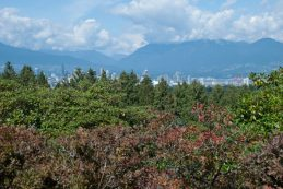 The View from Queen Elizabeth Park from Vancouver, BC