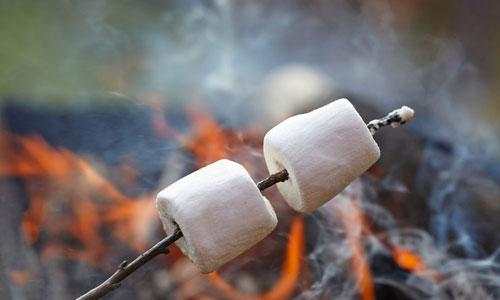 5-campfire-cones2
