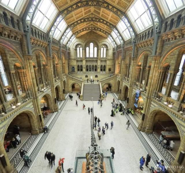 Museu de História Natural, Londres