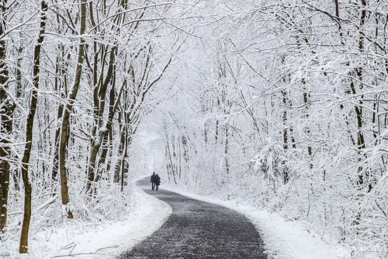 Inverno e caminhadas na neve em Kahlenberg em Viena