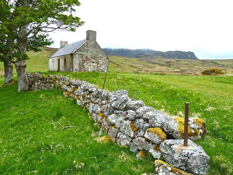 Irlanda-Campo --- CC0