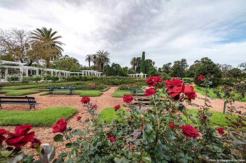 Parque El Rosedal Rose no Bosques de Palermo (Bosques de Palermo) - Buenos Aires