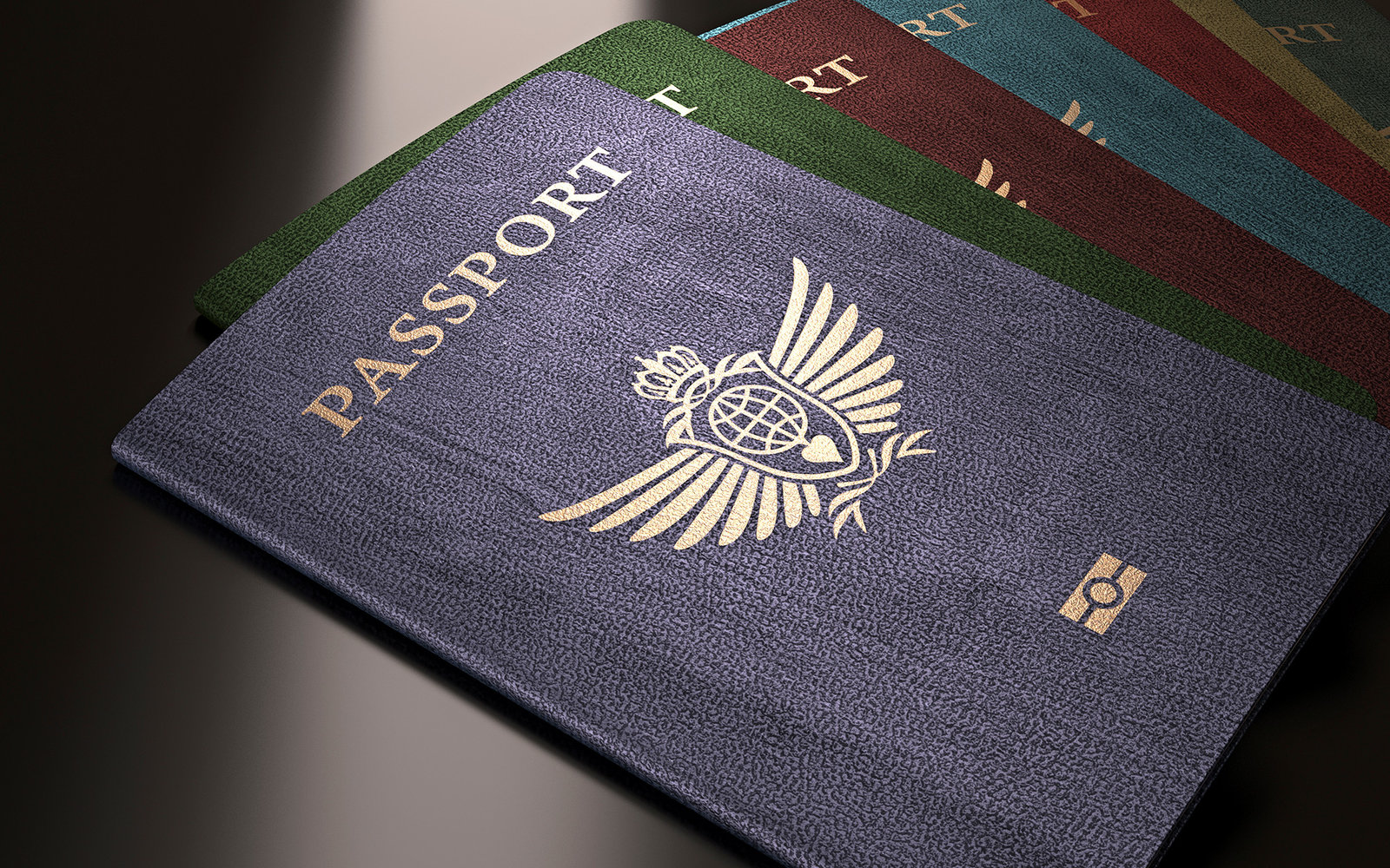 What Your Passport Color Really Means