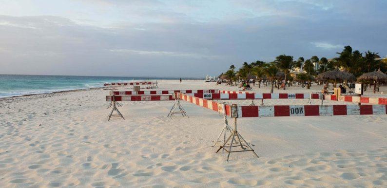 Broed- en schildpaddenseizoen Aruba