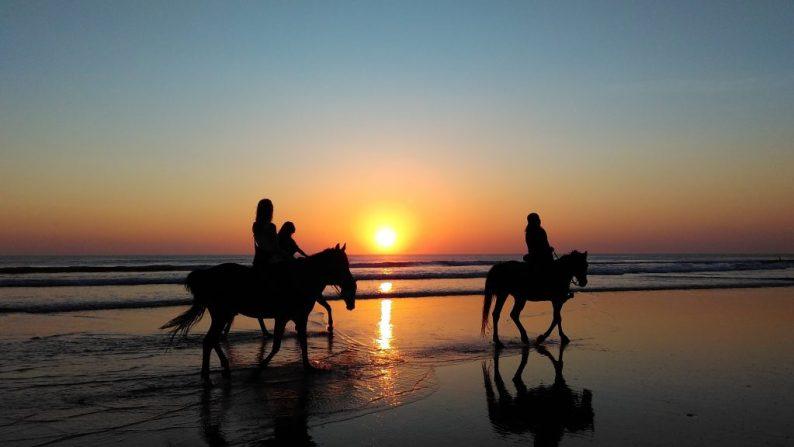 Paardrijden op Corsica