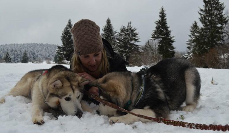 Huskysafari - Noorwegen - wintersport