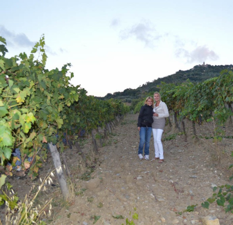 Wijn proeven bij Aziende Agricola Cerbaia - Montalcino - Toscane