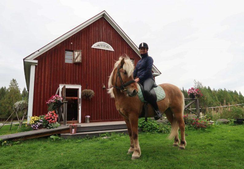 Paardrijden op IJslanders in Finland