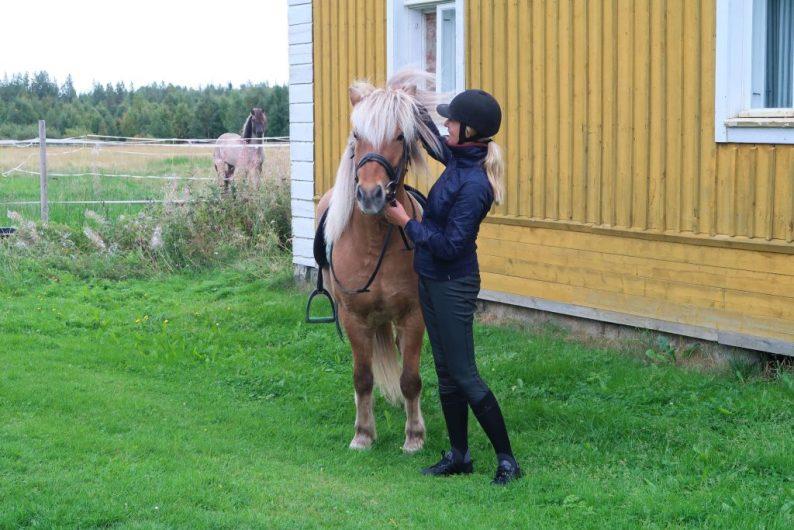 Ruitersport en paardrijkleding bij Decathlon