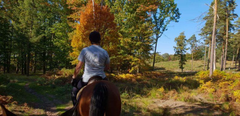 Dagje paardrijden en buitenritten in Limburg, Nationaal Park De Meinweg