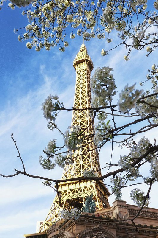 Eiffel Tower Paris Las Vegas