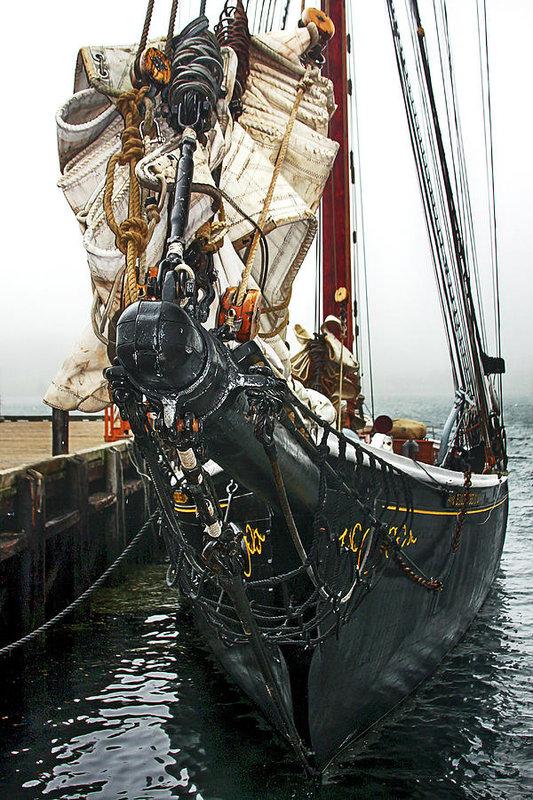 Bluenose II schooner vertical by Tatiana Travelways