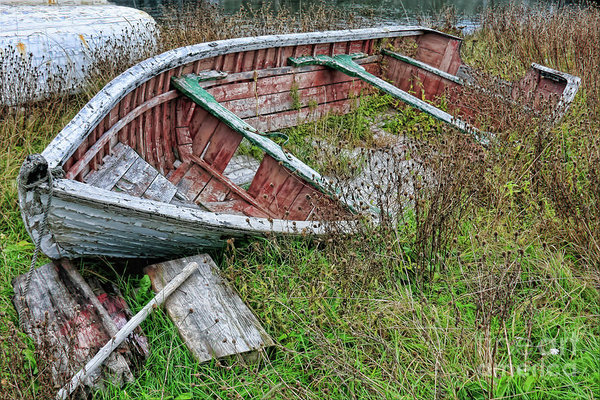Rodney in the silent mode - a wreck boat in Newfoundland by Tatiana Travelways