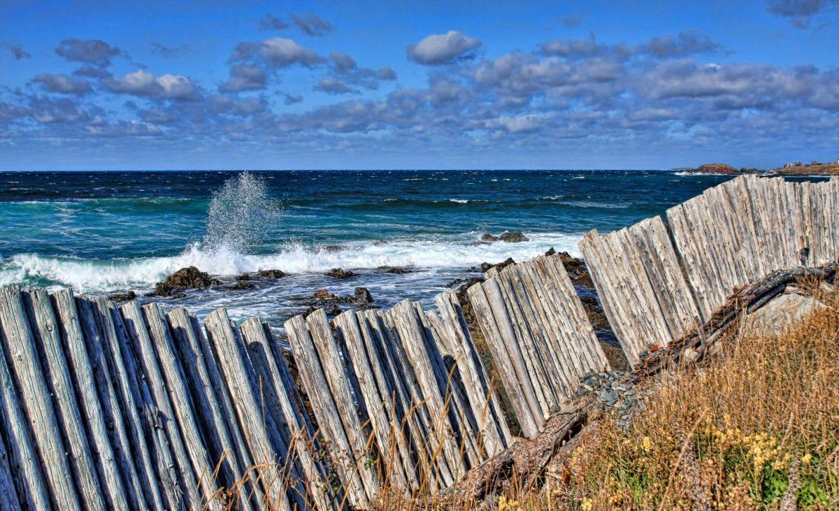 Cape Bonavista coastline fence, by Tatiana Travelways