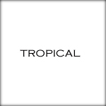tropical copy
