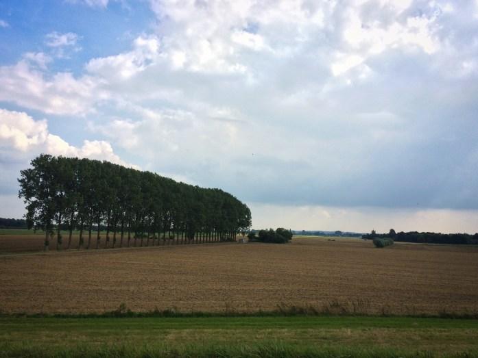 Biking in Nijmegen, the Netherlands