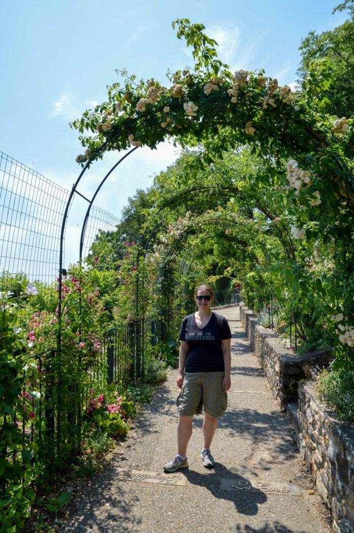 Rose garden, Parc des Hauteurs, Lyon, France