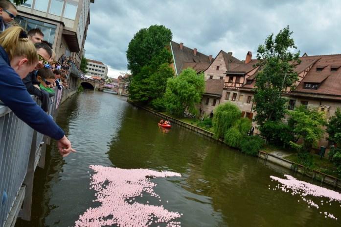 Lions Entencup 2017, Nuremberg, Germany