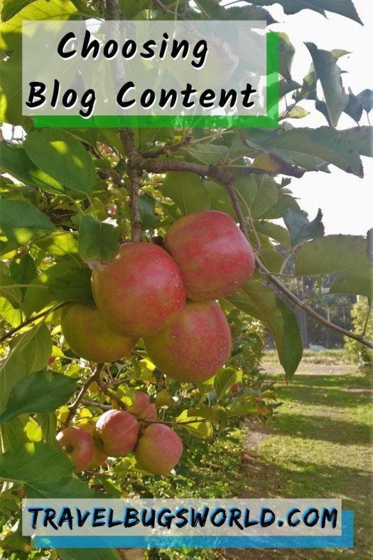 choosing_blog_content_pinterest_pin