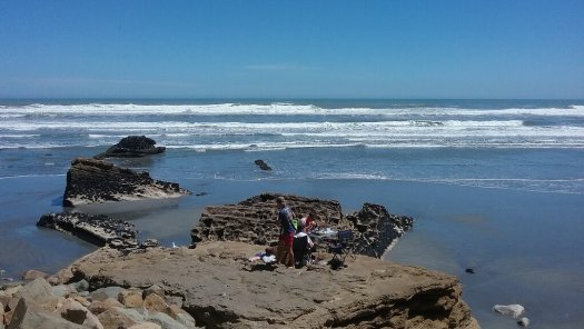 West Coast New Zealand beach