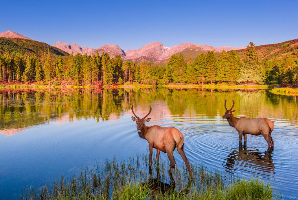 Trail Ridge Road Rocky Mountain National Park