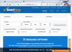 Smartfares flights booking review : Entering passenger information