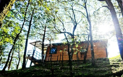 Aamod Shoghi Resort: The Perfect Abode in the Woods