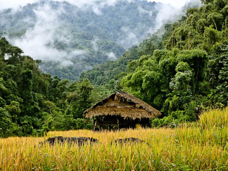 Picturesque village in Basar, Arunachal Pradesh