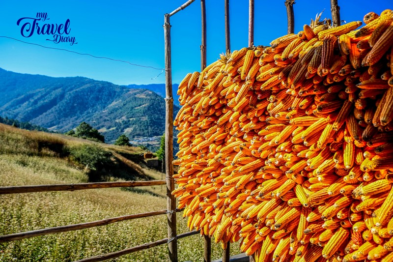 Corn stack with a view in Dirang Valley, Arunachal Pradesh
