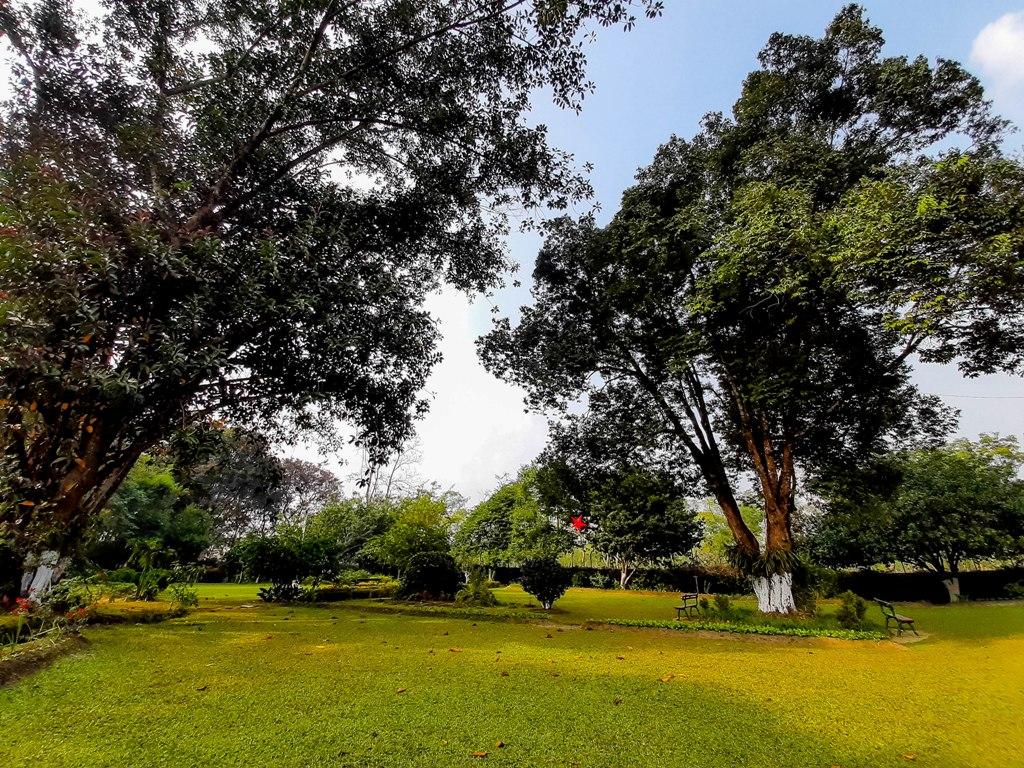 The lush lawn area of the tea Estate