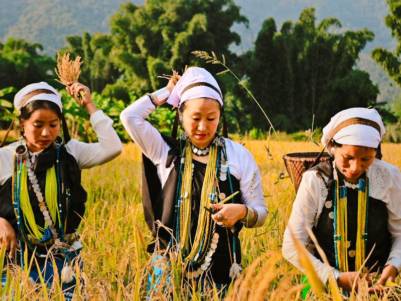Offbeat Aalo in Arunachal Pradesh: A Complete Travel Guide