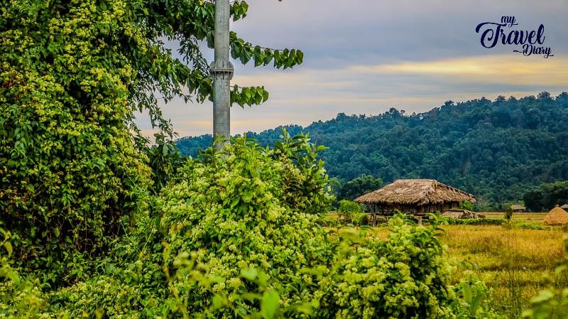 The rustic feel of Ledum Village in Arunachal Pradesh