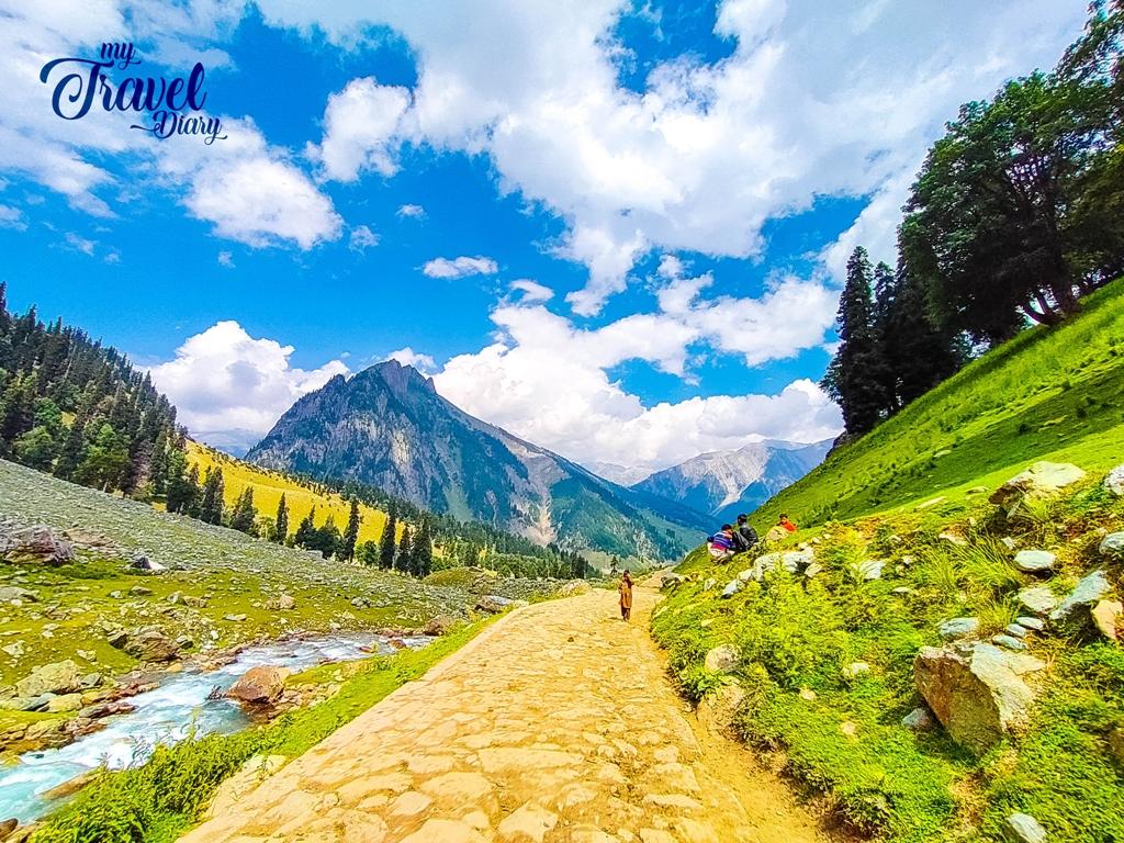 On the way to Thajiwas Glacier, Sonamarg, Kashmir