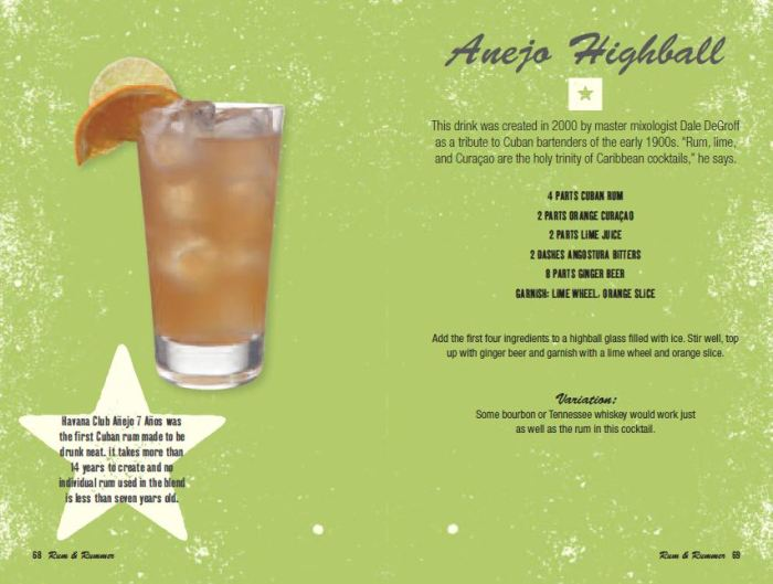 Anejo Highball cocktail recipe from the book Cuban Cocktails