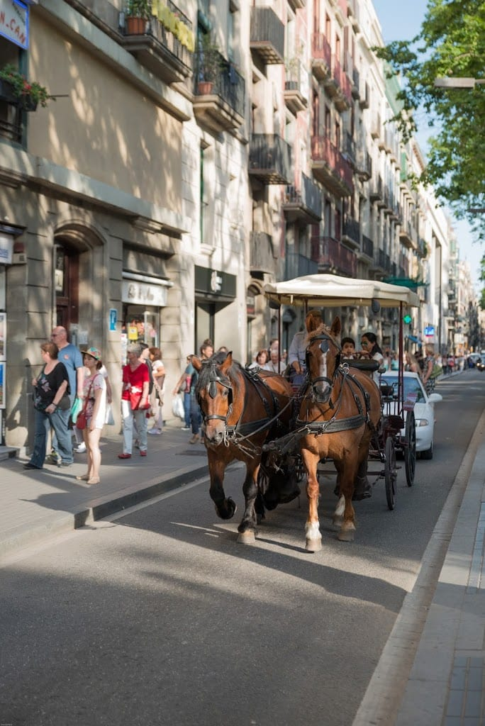 Barcelona horse drawn carriage