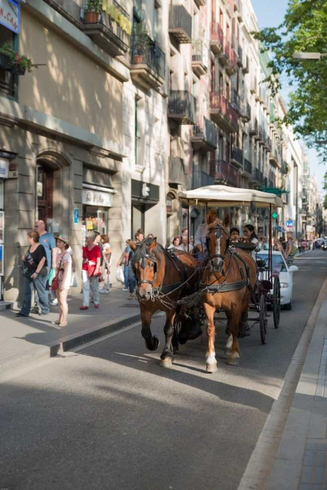 Horse drawn carriage in Barcelona Las Ramblas