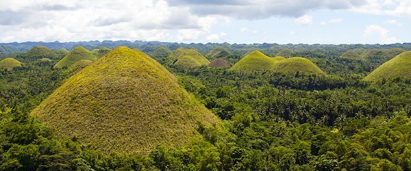 These are the famous Chocolate Hills of Bohol, the island's top tourist attraction.
