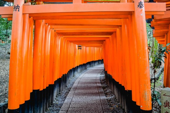 ORANGE-TORII-GATES in Kyoto, Japan