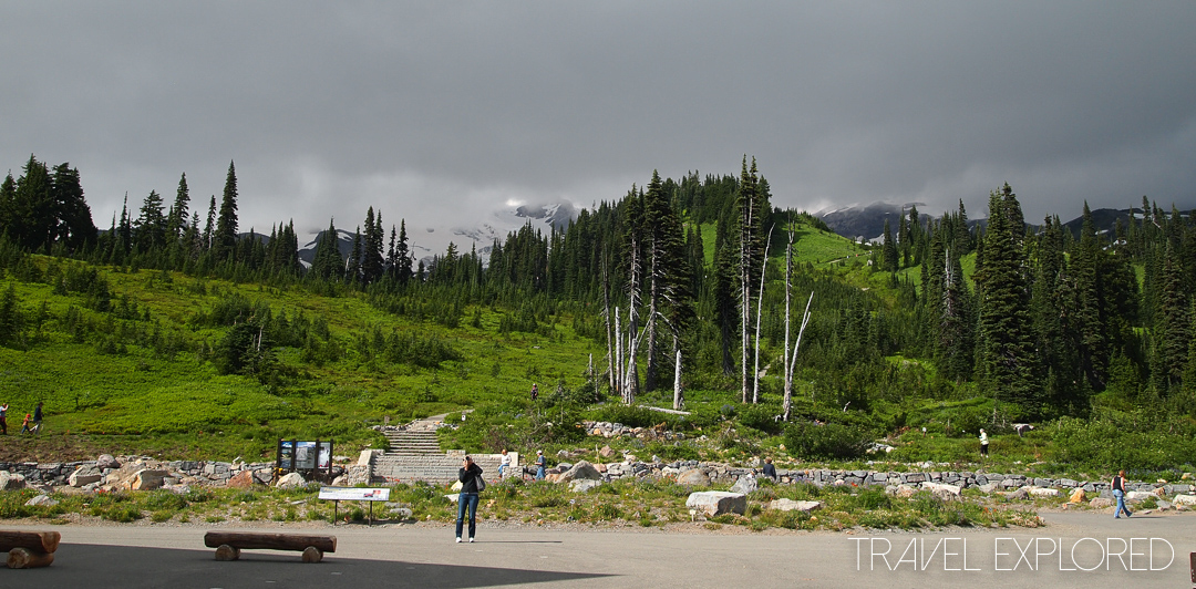 Mt Rainier - Near Paradise Visitors Center