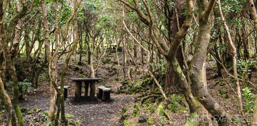 Horta - Picnic Area