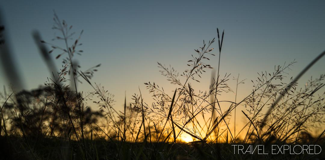 Minnippi Parkland Sunset