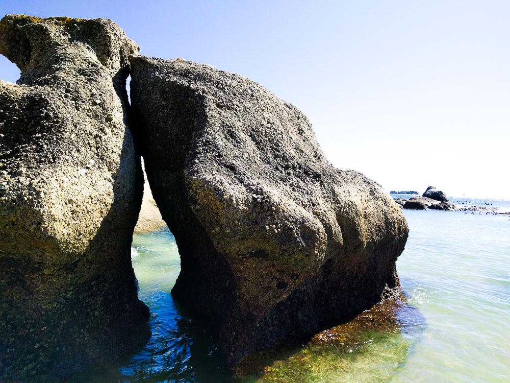 amazing boulder at boulders beach
