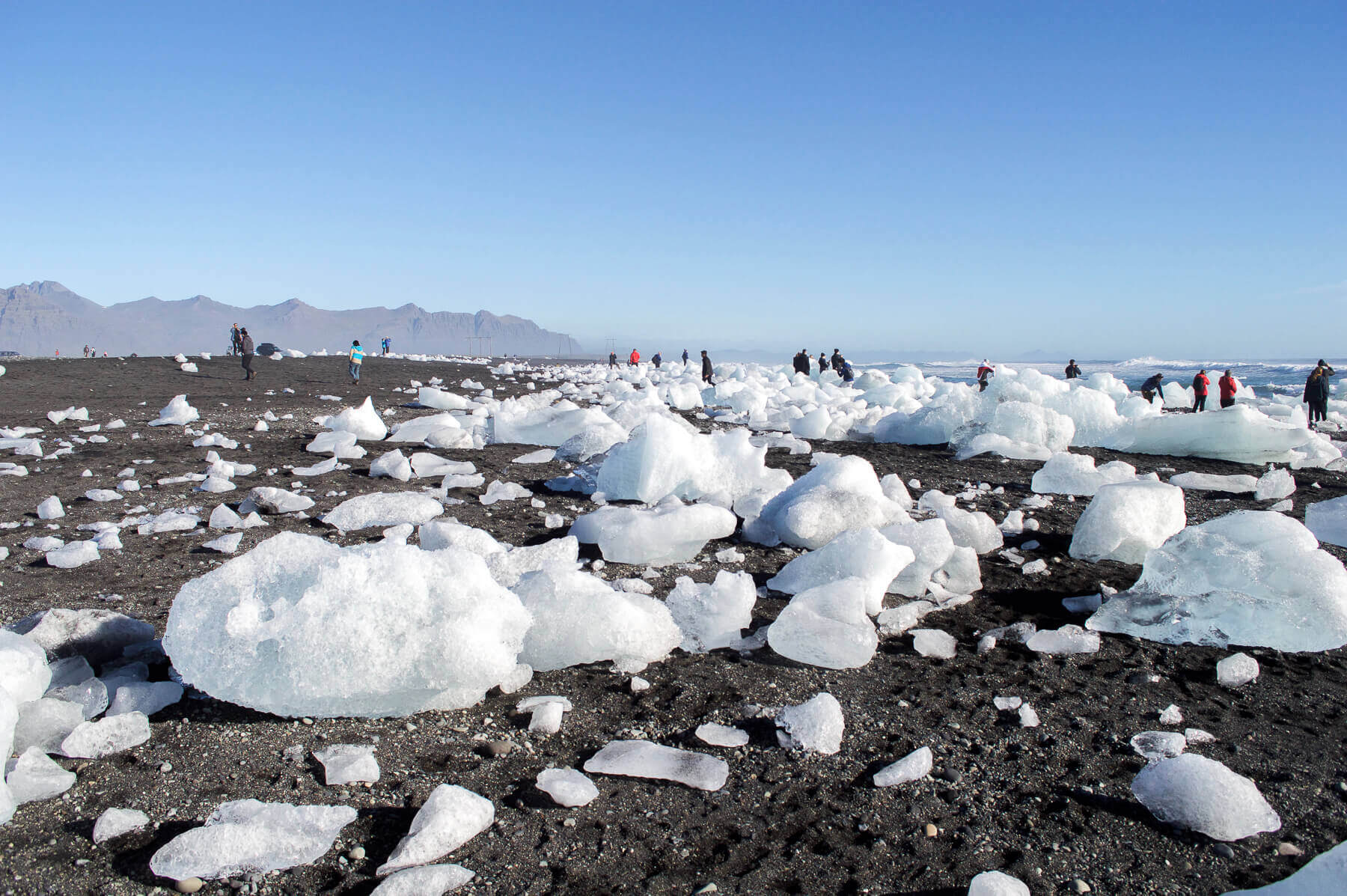 Icebergs on a black beach in Iceland