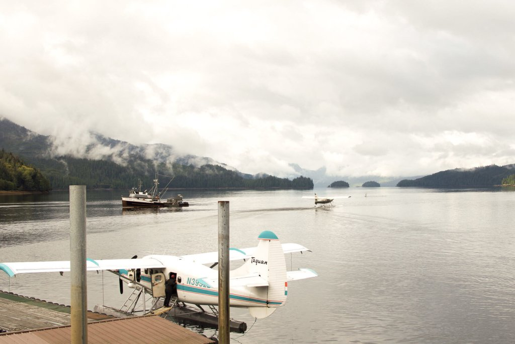 Float planes resting on the water of Neets Bay, Alaska - One plane moving into take off