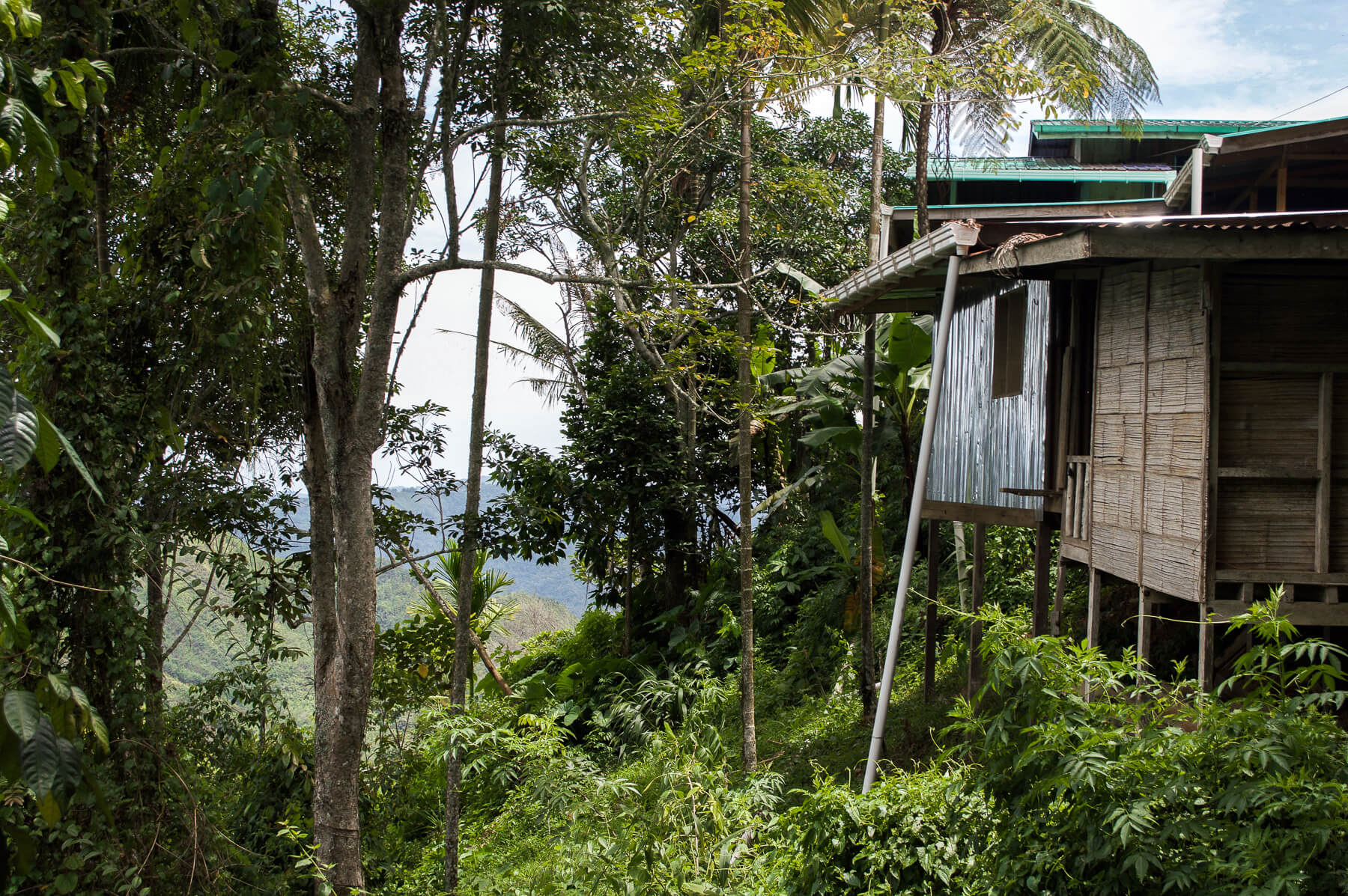 A house on stilts in the mountains of Kinabalu